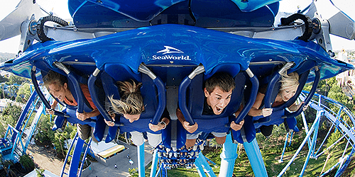 Excusion_SeaWorld-OrlandoVacaton